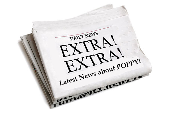 Extra! Extra! Latest News About Poppy