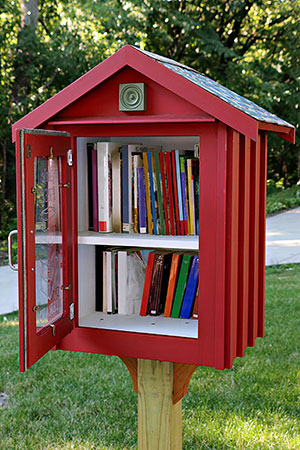 Little FreeLibrary